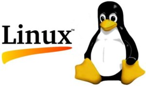 IT Support small business Linux