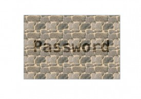 IT Support small business Password